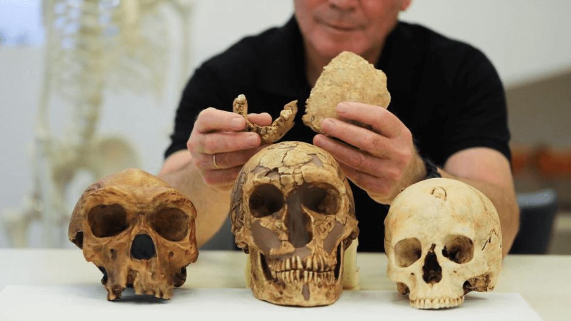 130 bin yıllık farklı bir insan türüne ait fosiller bulundu
