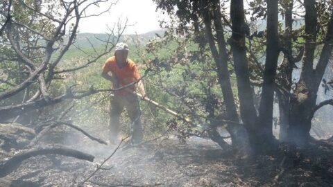 3 gündür süren yangın tamamen kontrol altına alınamadı