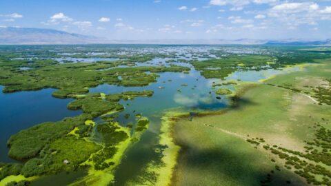 Eber gölü kuruyor: Derinliği 25 metreden 1 metreye düştü