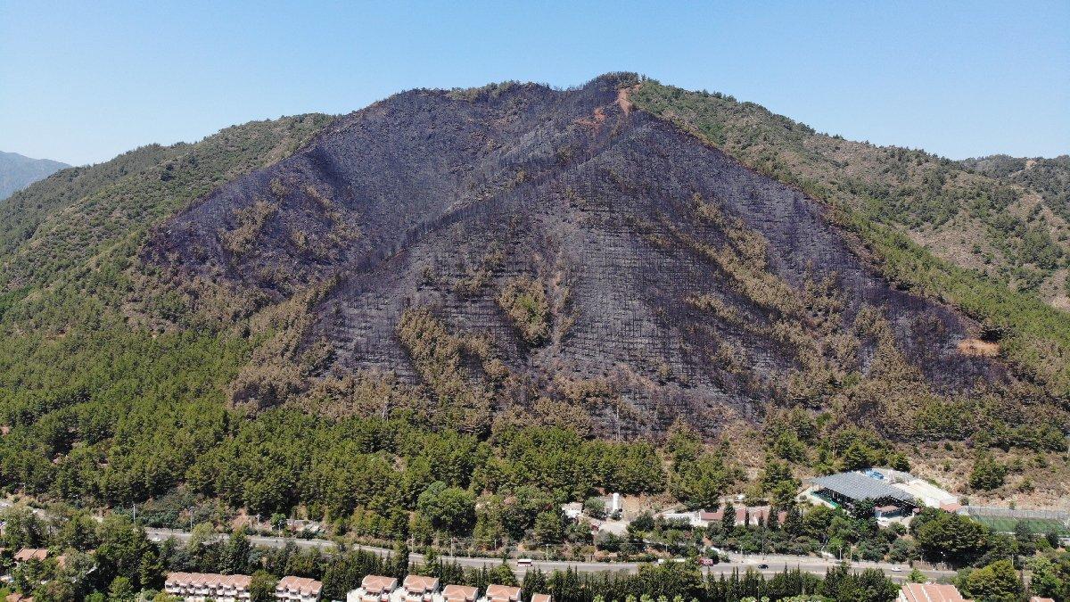 Marmaris'te yanan ormanlık alan havadan görüntülendi