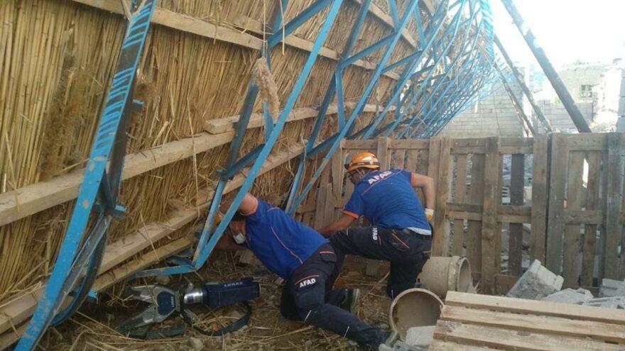 Ahır inşaatı çöktü, yüzlerce hayvan göçük altında kaldı
