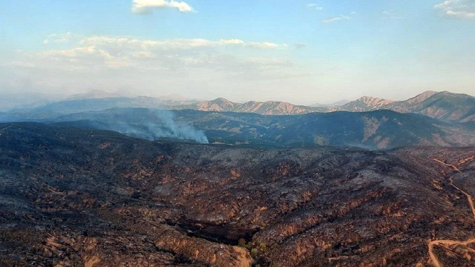 Bingöl'deki orman yangını 4 gün sonra kontrol altında