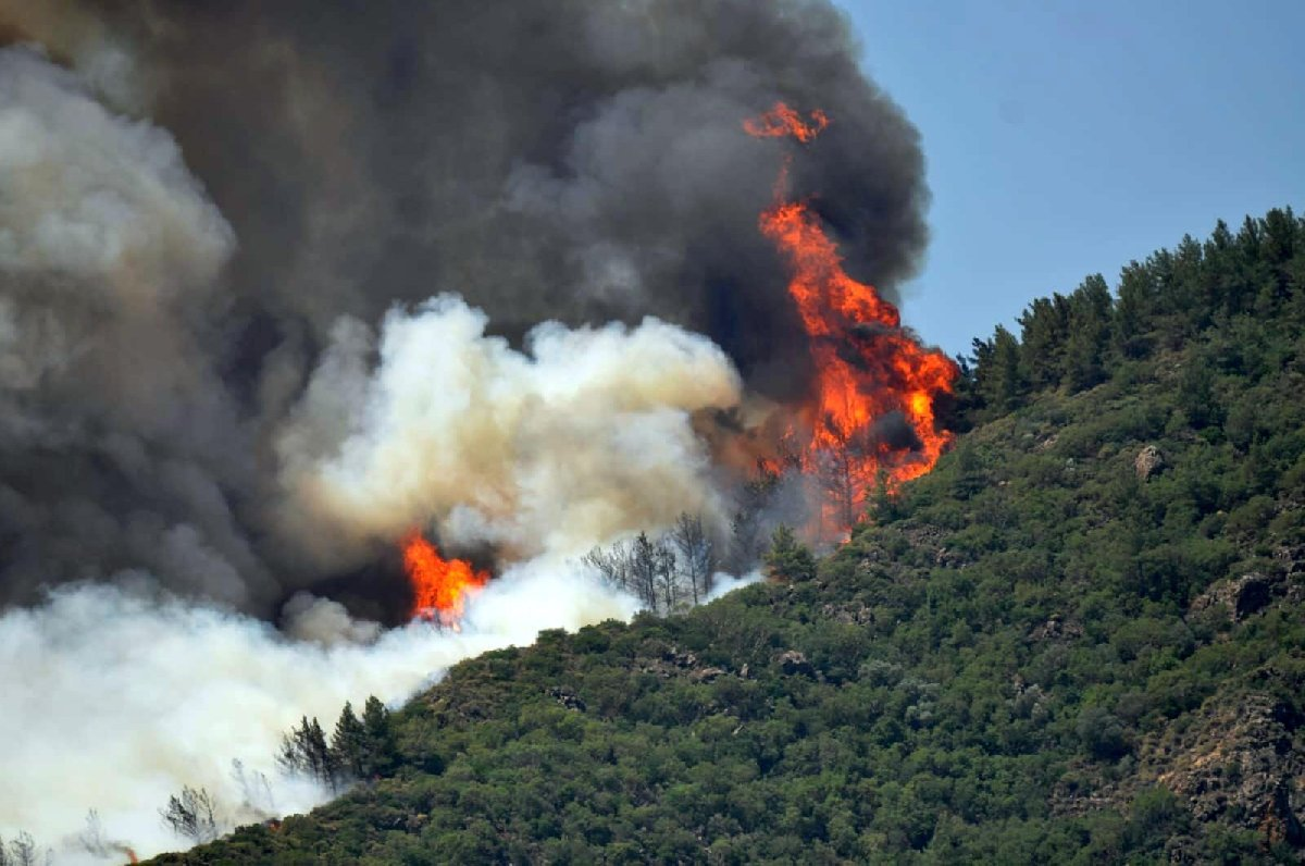 Marmaris'te 150 futbol sahası büyüklüğünde orman yandı