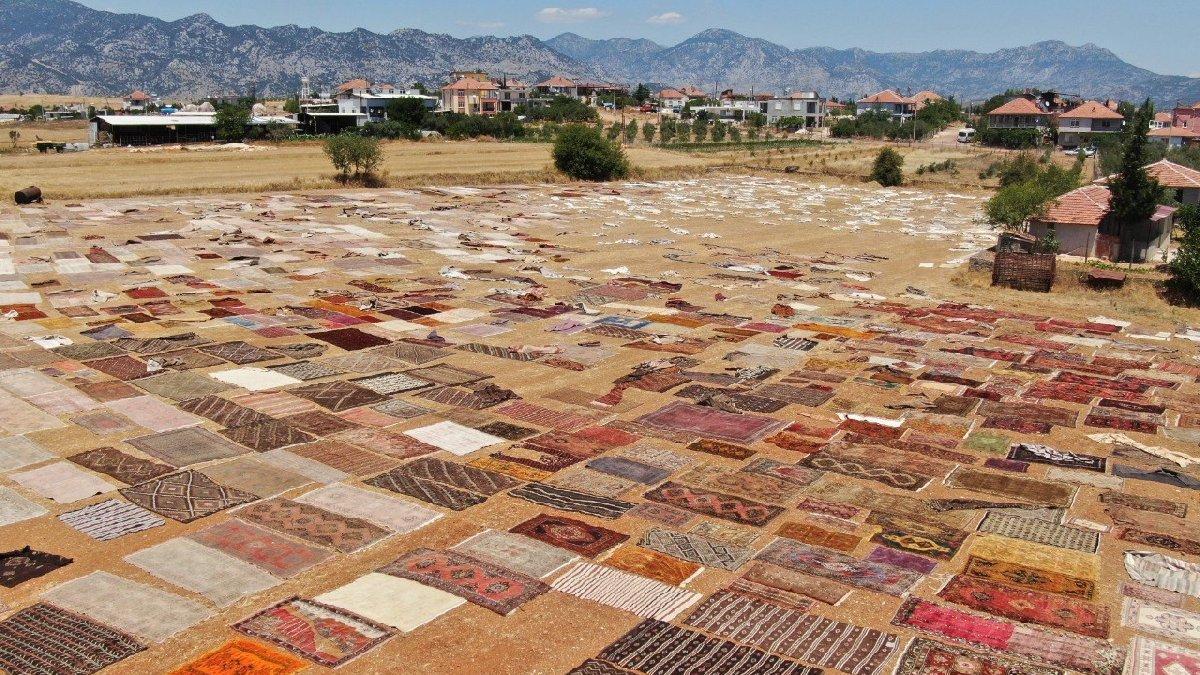 Antalya'da tarlalara halı serildi