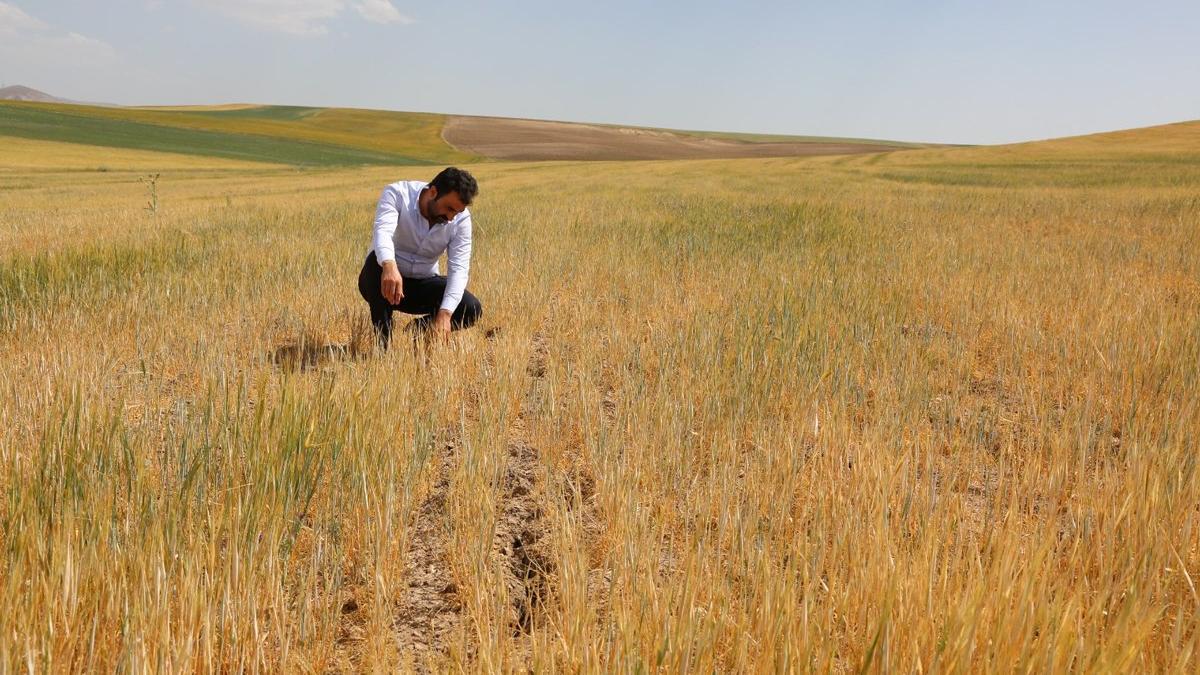 Çiftçilerin TARSİM tepkisi: Doğal afetin sigortası mı olur!