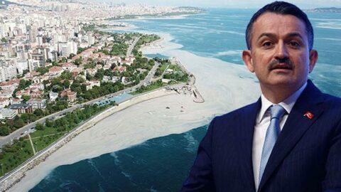 'Marmara Denizi'nden çıkan balık yenir mi?' sorusuna Bakan Pakdemirli'den yanıt