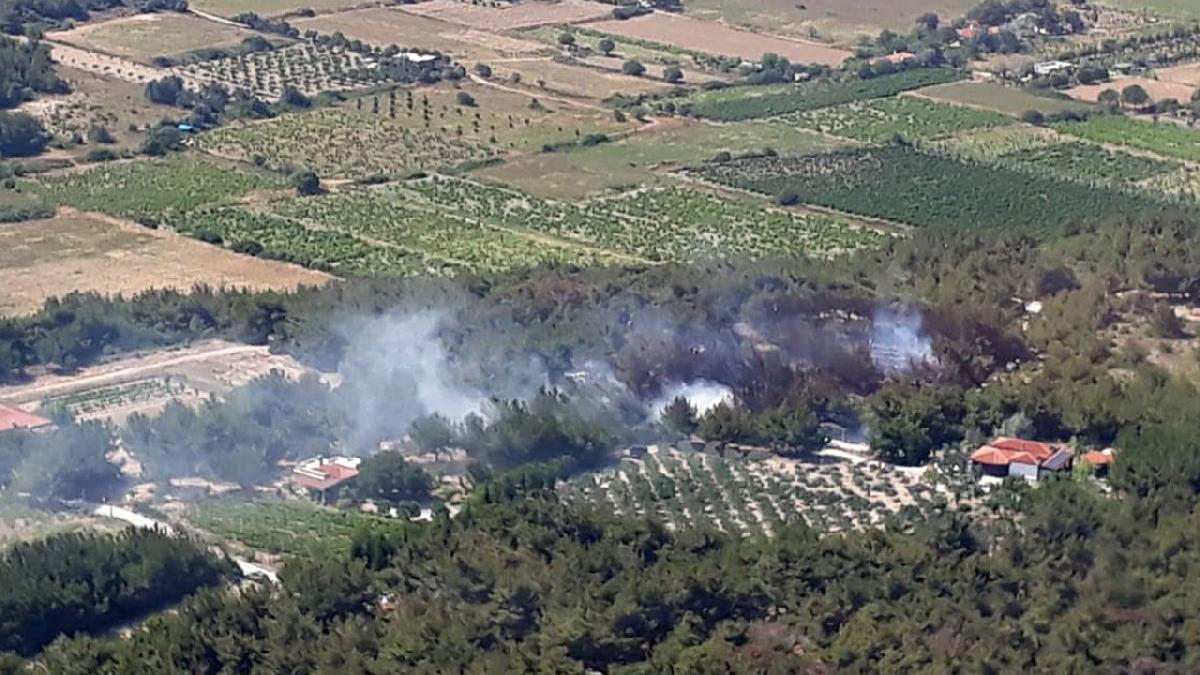 Bozcaada'da yangın! Bakan Pakdemirli'den açıklama