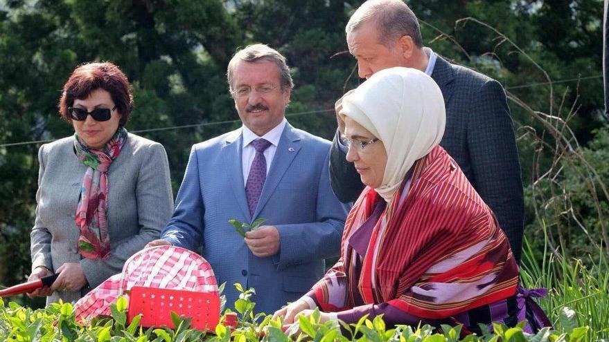 Çay toplayan başkana kamuda yeni görev