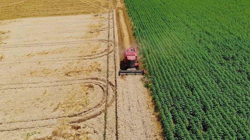 Ekonomik çöküş yaşayan 46 bin çiftçi pes etti