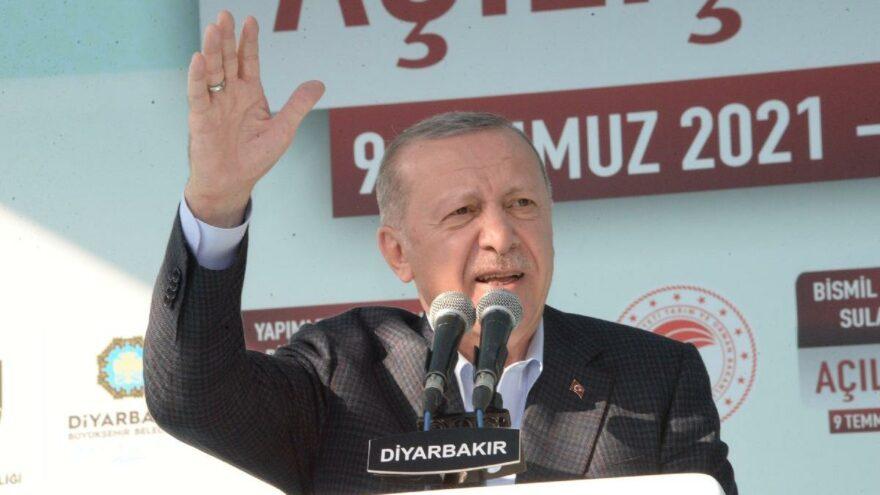Eski AKP'li vekilden, Erdoğan'ın Diyarbakır'da okuduğu şiirle ilgili ilginç iddia