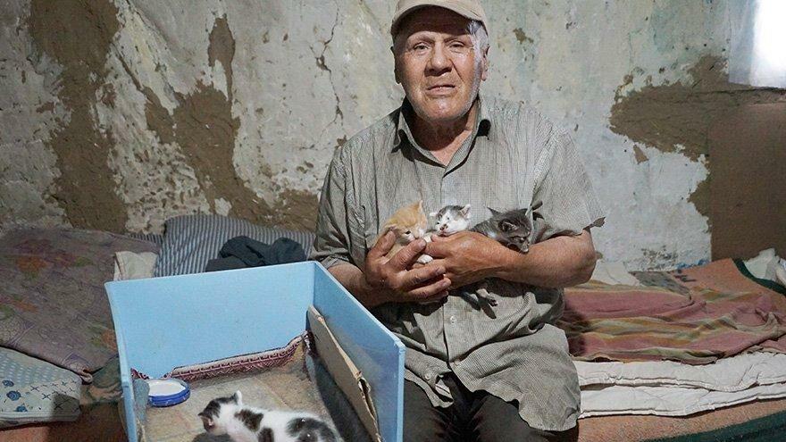 Barakada yaşıyor, bir lokma ekmeğini 36 kedi ile paylaşıyor