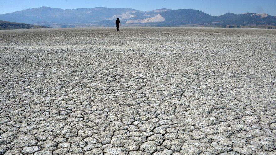 İklim değişiyor; hastalık ve zararlı sayısı artıyor