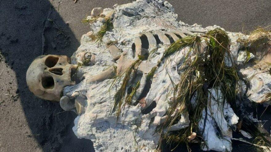 Samsun'da sahile iskelet vurdu