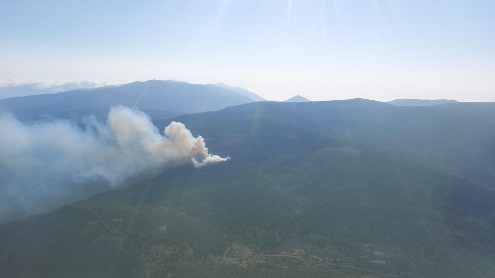 Hatay'da örtü yangınında 3 hektar alan zarar gördü