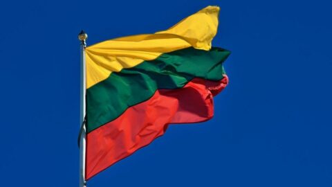 Litvanya'dan sığınmacı kararı: Toplu gözaltına onay