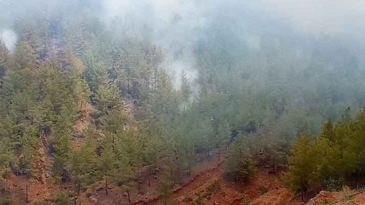 Mersin'deki orman yangını büyüyor: Ekipler seferber oldu