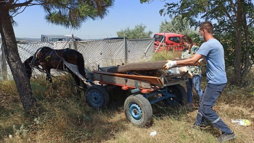 Şiddet gören köpeği teslim almaya gittiler, yolda eziyet edilen yaralı atı da kurtardılar