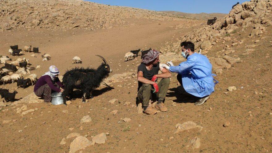 Dağdaki çobana da aşı