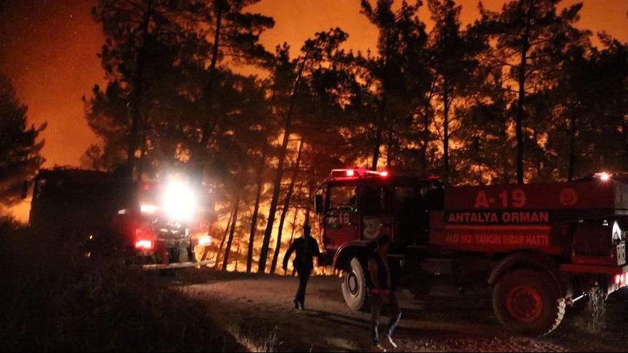 Mersin ve Hatay'da orman yangını kontrol altına alınmaya çalışıyor