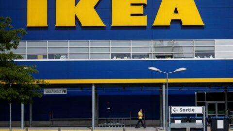 Çevre aktivistleri Ikea'yı hedef aldı: Yasadışı kesilen ağaçlarla çocuk mobilyası yaptılar