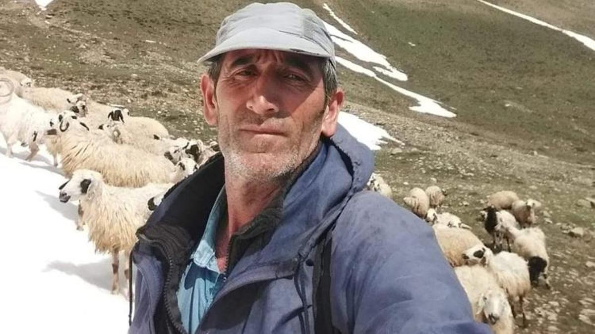 Tunceli'de ayı saldırısına uğrayan vatandaş yaralandı
