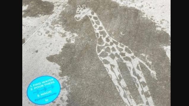 Ohio sokakları sadece yağmurdan sonra ortaya çıkan resimlerle süslendi