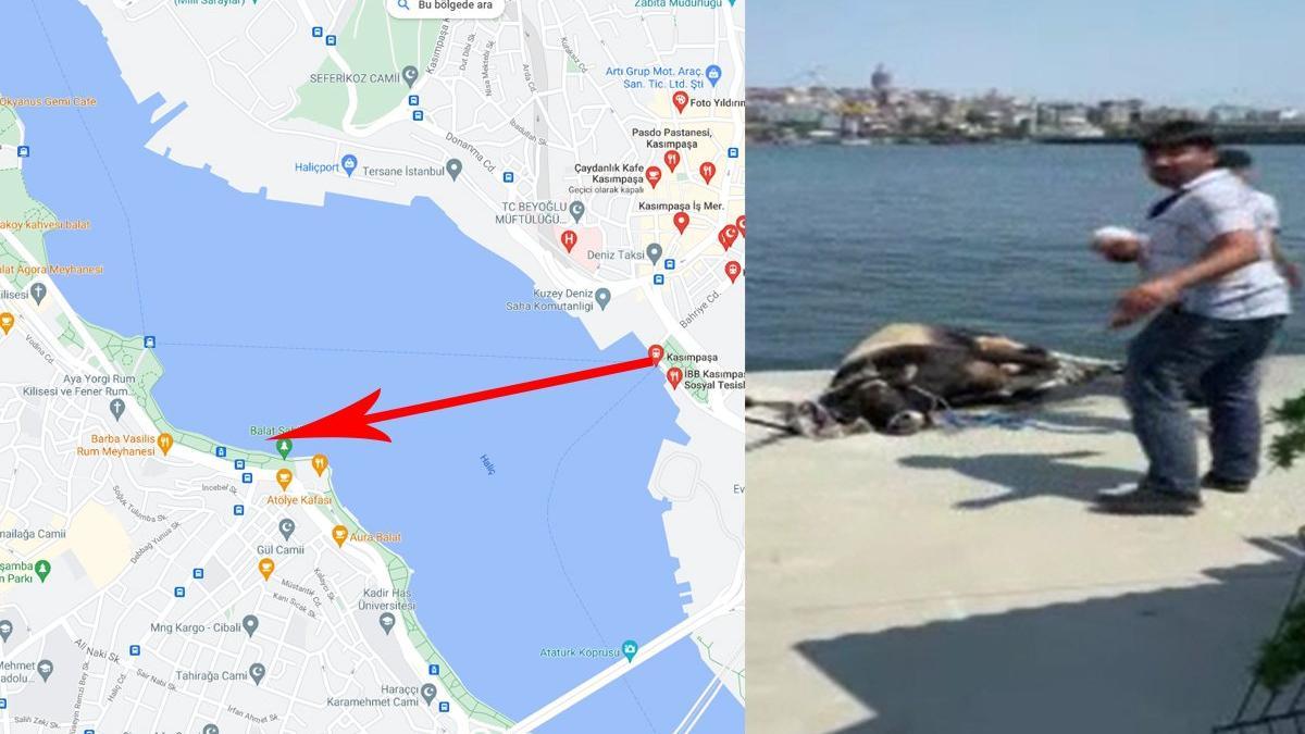 Kasımpaşa'dan denize atlayıp Balat'a kadar yüzdü ama kurtulamadı