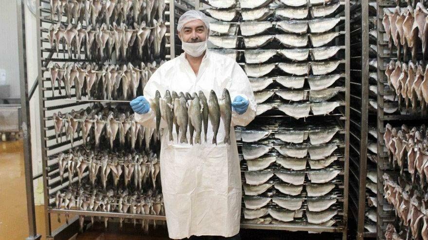 Denizi olmayan Denizli, balık ihracatında rekor kırıyor