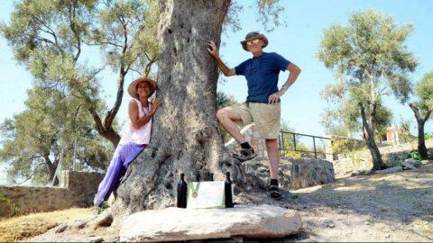 27 yıllık turizmci zeytinci oldu altın ödülü aldı