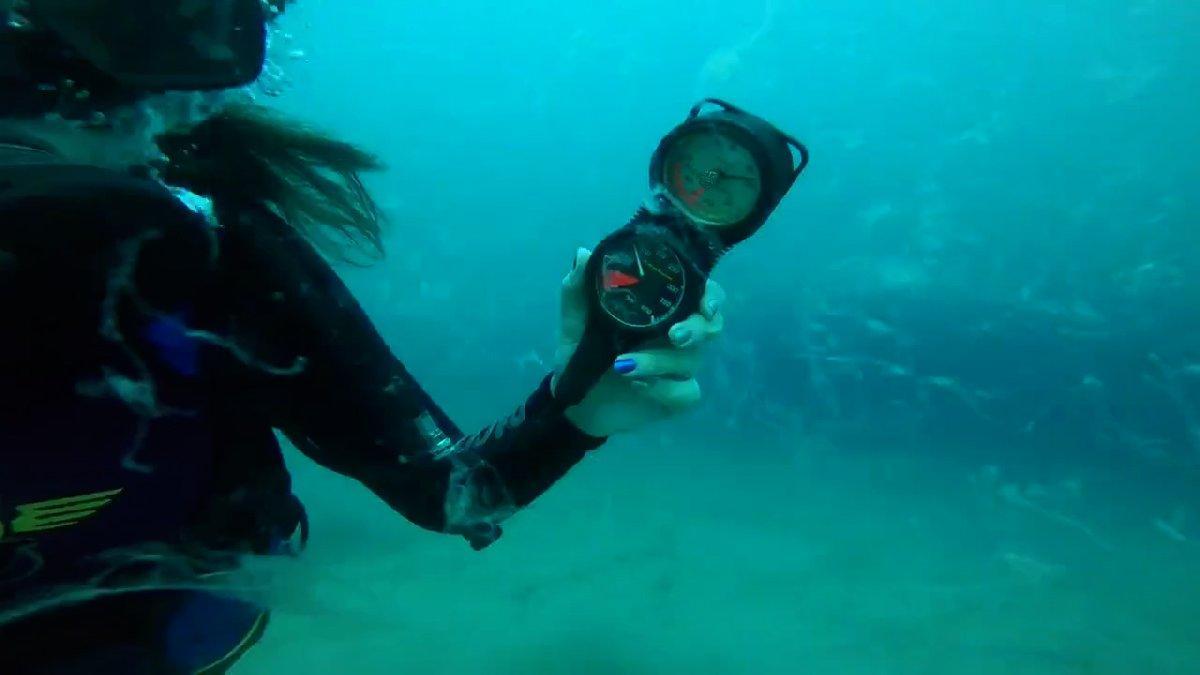 Bakanlar denizden çıkan balığı yemişti: 17 metrede müsilaj tespit edildi