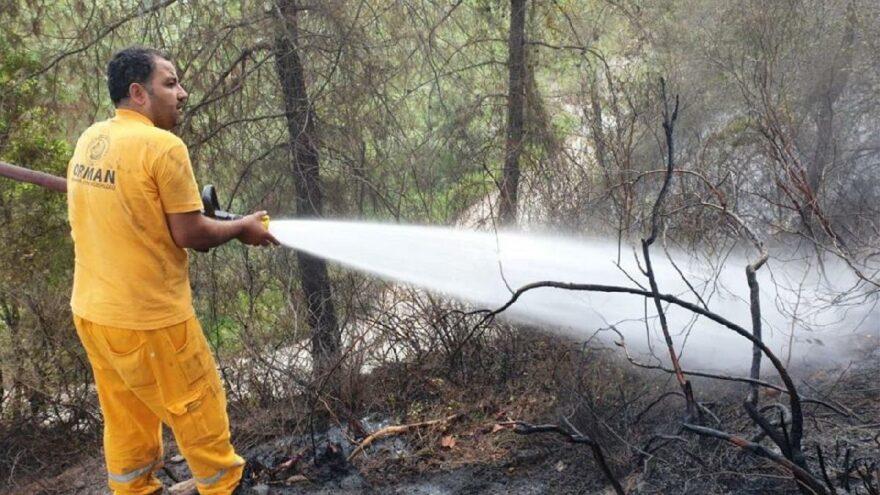 Orman Genel Müdürlüğü: Artış canımızı çok sıkıyor