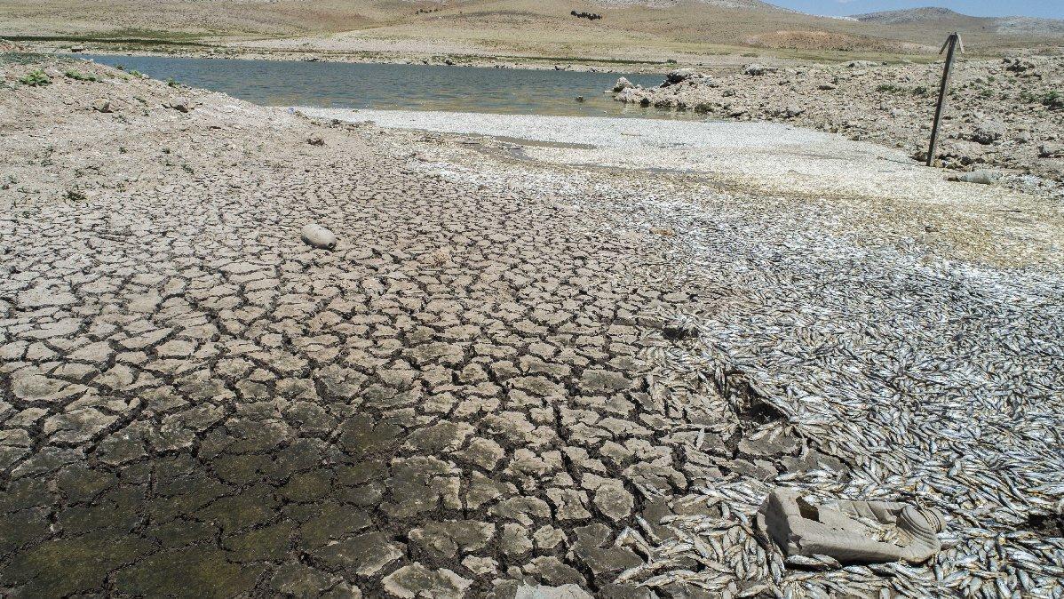 Konya'da dehşete düşüren kuraklık manzarası