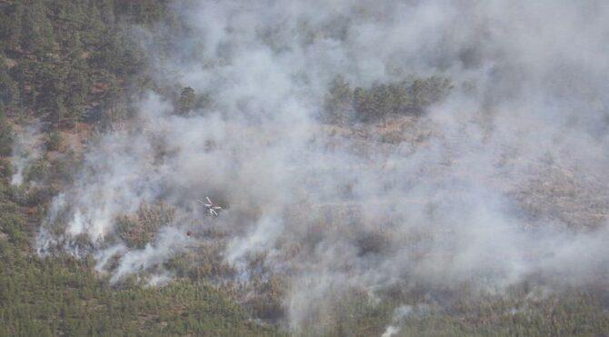 Mersin'de yangın! 52 ev boşaltıldı