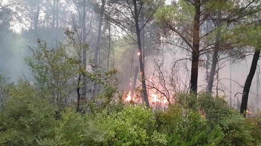 Osmaniye'deki yangın hızla ilerliyor! Milli parka sıçradı