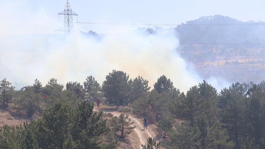 Karaman'da çıkan yangında 5 hektar alan zarar gördü