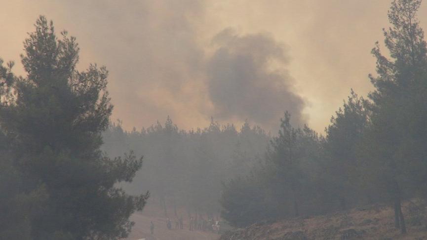 Kilis'te de orman yangını çıktı