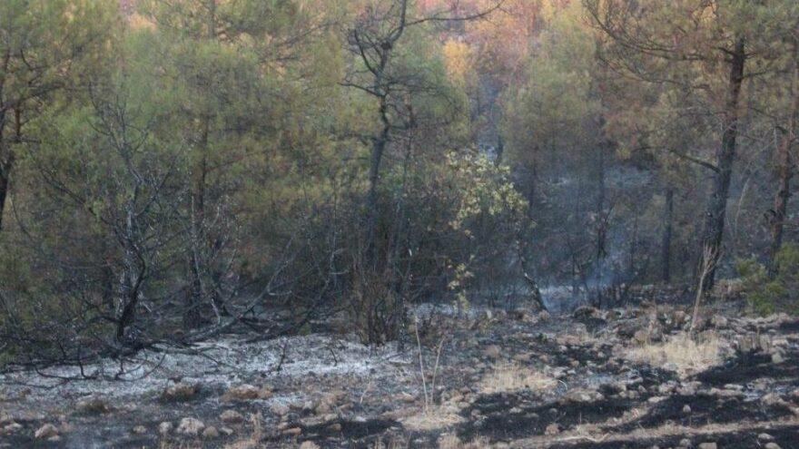 Dumanlı hava kentte orman yangını paniği yaşattı