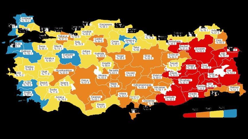 Yeni corona virüsü haritasında İstanbul'da dikkat çeken gelişme