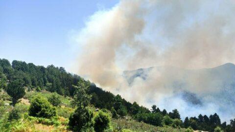 Yangın fırtınası Kütahya, Didim ve Bodrum'a da sıçradı