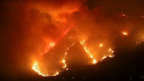 63 yangından 43'ü kontrol altına alındı