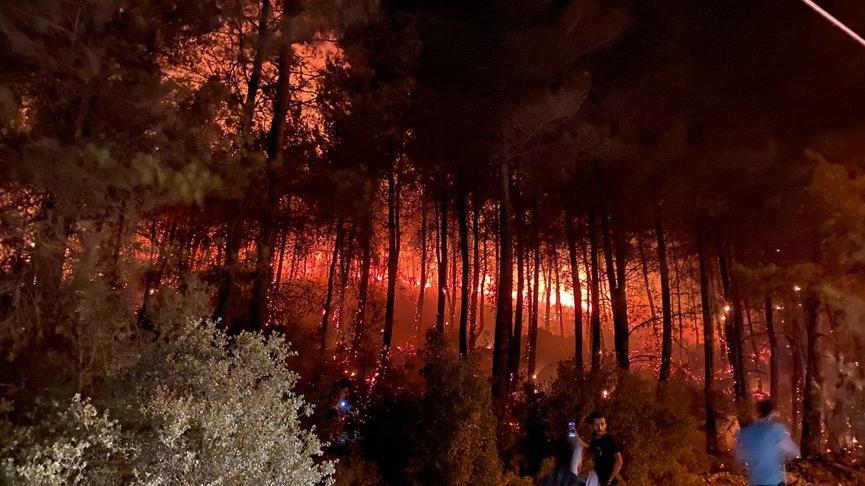 Muğla Fethiye Ölüdeniz'de orman yangını çıktı! Belediye başkanından açıklama