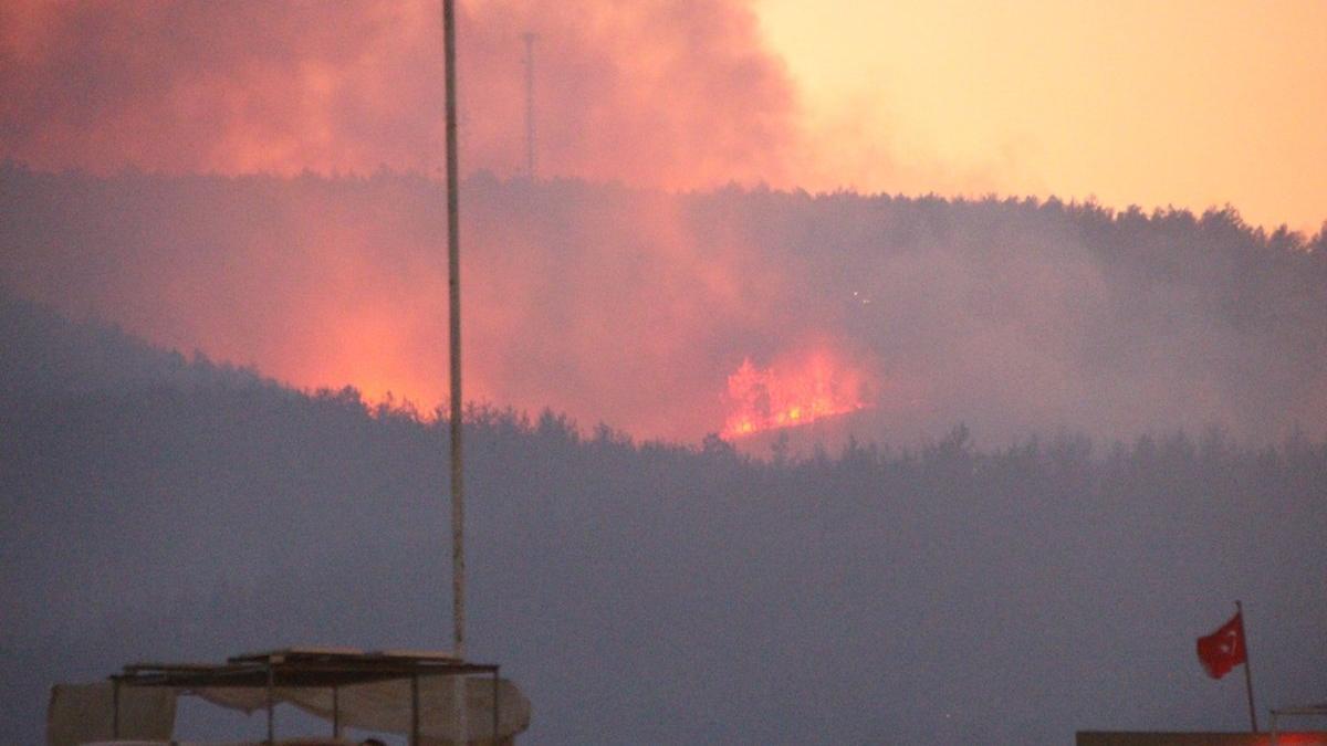 Bakan açıkladı: İki yangın kontrol altına alındı