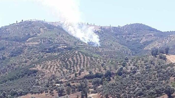 İzmir Kiraz'da da orman yangını çıktı