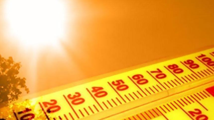 Mevsim normallerini 8 derece aştı…. Kavurucu sıcaklar bitmiyor