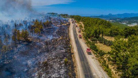 Orman yangınlarında son durum! AFAD il il açıkladı