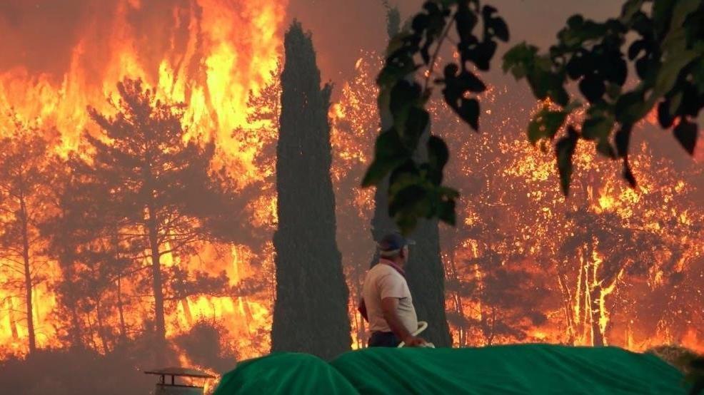 Ormanlar yanarken kayyum THK başkanı düğüne gitmiş