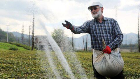 10 yılda kimyasal gübre kullanımı 5 milyon ton arttı