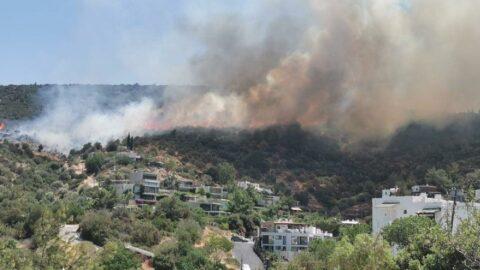 Bodrum'da yangın yeniden alevlendi