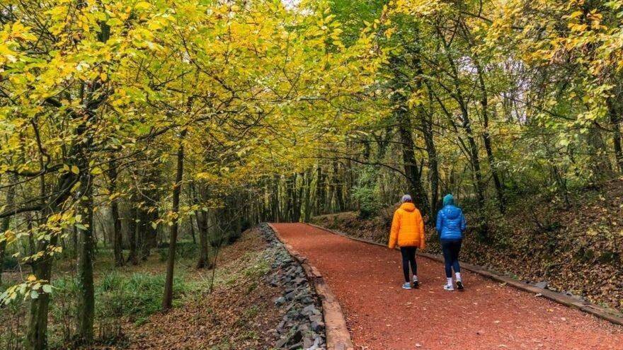 İstanbul Valiliği'nden ormanlara giriş yasağına ilişkin yeni açıklama