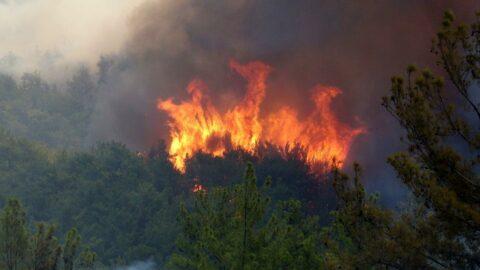 EGM'den yangın paylaşımları sonrası 'dezenformasyon' açıklaması